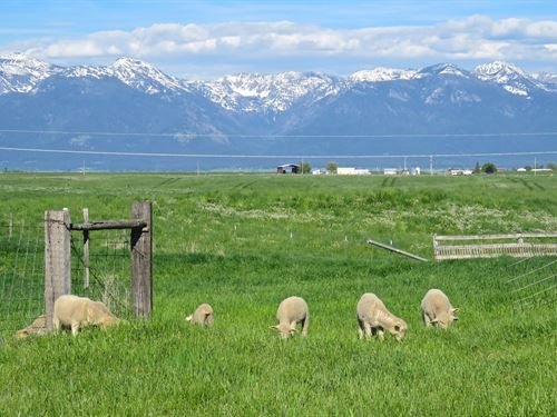 Mission Mountain Valley Views : Polson : Lake County : Montana