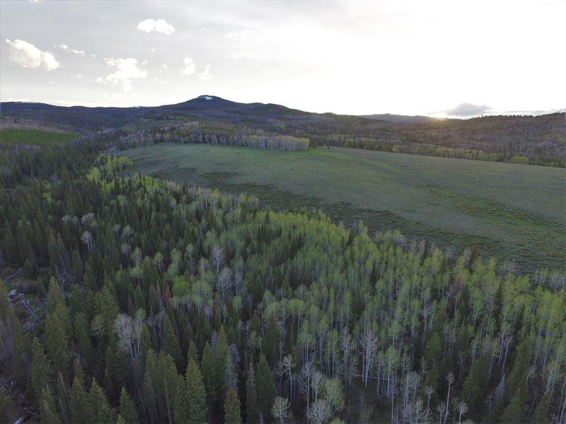 Encampment Ranch : Encampment : Carbon County : Wyoming
