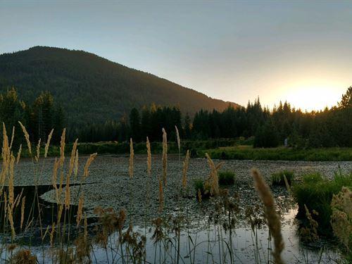 Sawtooth Sanctuary : Heron : Sanders County : Montana