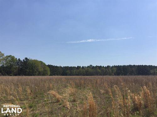 Arrowhead Road Farming And Hunting : Hartsville : Darlington County : South Carolina