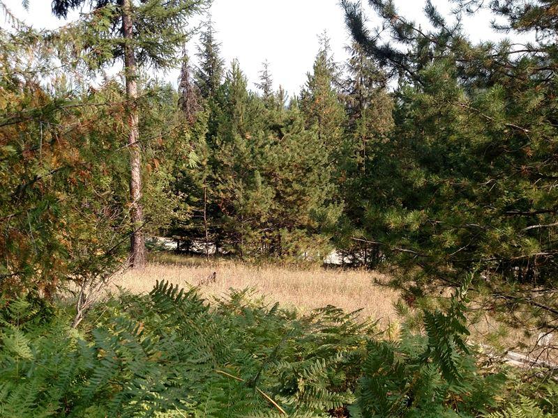 Kaniksu Retreat : Blanchard : Bonner County : Idaho