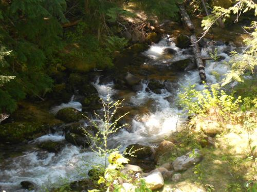 Fishing On Caribou Creek : Bonners Ferry : Boundary County : Idaho