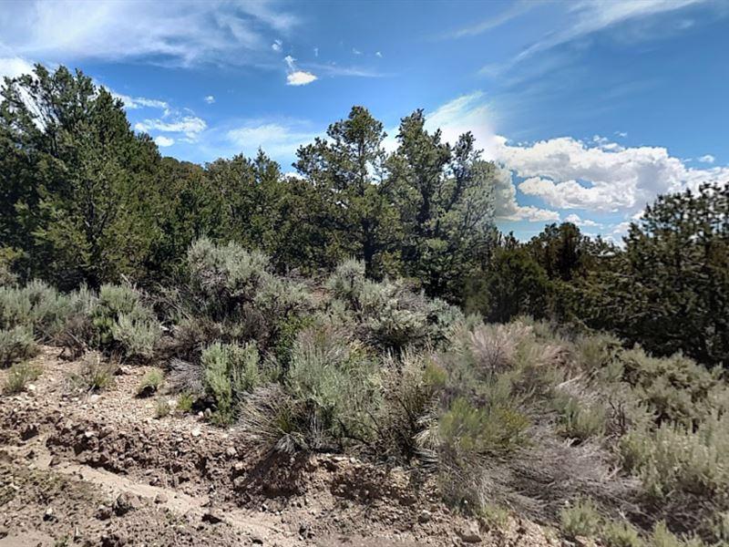 Costilla County, Fl $25,000 : Colleyville : Costilla County : Colorado