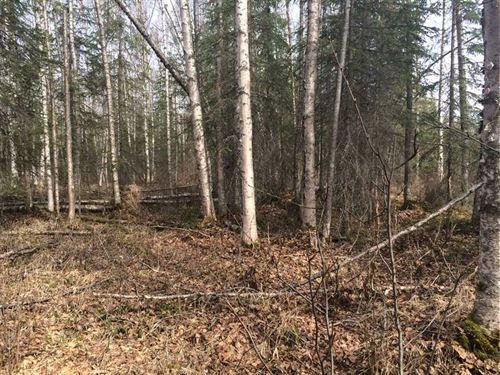 Beautiful, Large 5 Acre, Residenti : Wasilla : Matanuska-Susitna Borough : Alaska