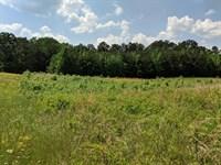 Johnson Lake Road Property : Cedartown : Polk County : Georgia