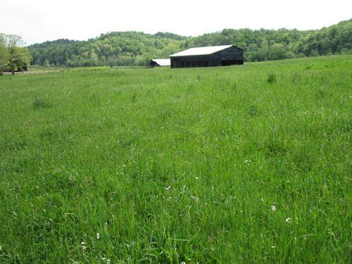 57 Acre Farm In Metcalfe County, Ky : Edmonton : Metcalfe County : Kentucky