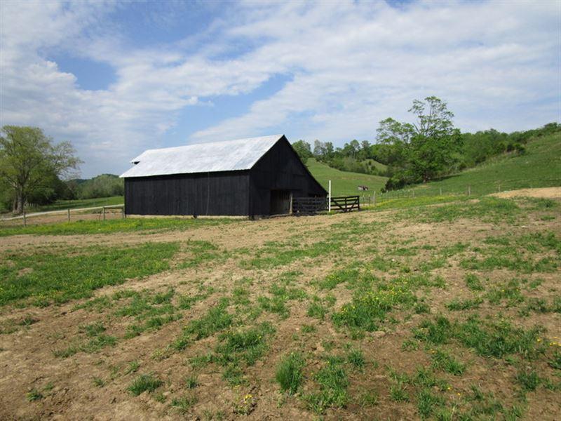 60 Acre Farm In Metcalfe County, Ky : Edmonton : Metcalfe County : Kentucky