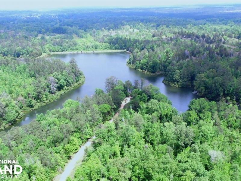 Flat Woods Lake Hunting, Fishing : Fort Deposit : Lowndes County : Alabama