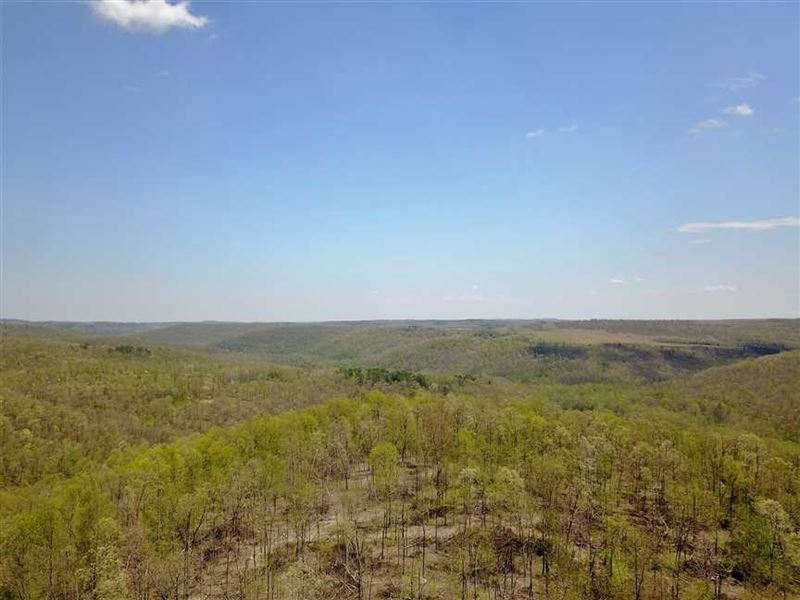 40 Acres Recreational Land Wit : Marshall : Searcy County : Arkansas