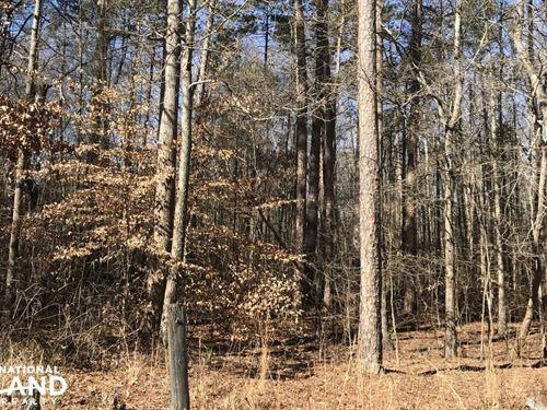 Safrit Road, Salisbury NC : Salisbury : Rowan County : North Carolina