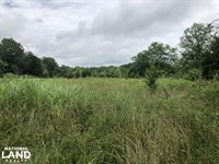 Elmwood Road Farm Land : Statesville : Iredell County : North Carolina