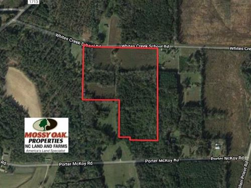 26 Acres of Farm And Timber Land : Council : Bladen County : North Carolina