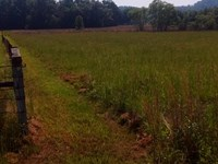 Prime Residential Development Tract : Duck Hill : Montgomery County : Mississippi