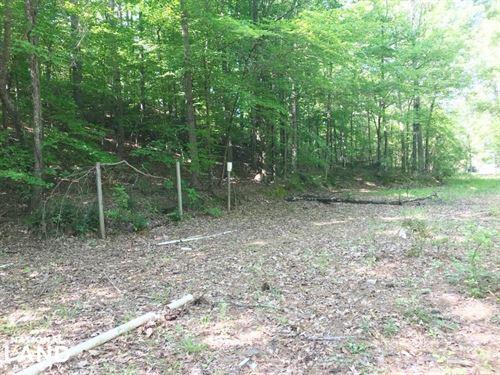 Belk Mobile Home Site : Fayette : Alabama