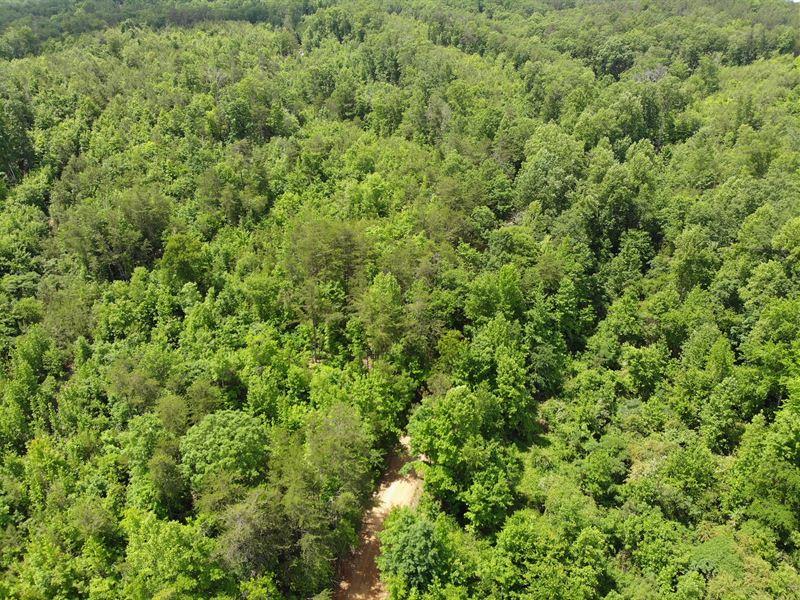 Bramlett 120 : Cedartown : Polk County : Georgia