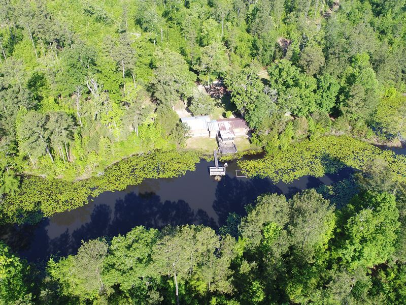 Land With Cabin And Stocked Pond : Thomasville : Grady County : Georgia