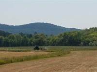 The Brady Champion Farm : Fairmount : Gordon County : Georgia