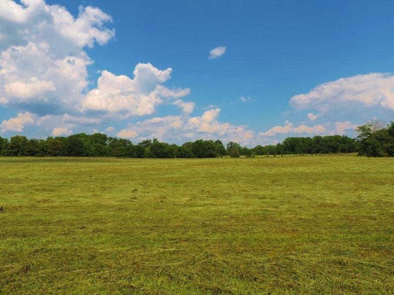 Cattle Farm, Ponds & 2 Houses : Monticello : Jasper County : Georgia