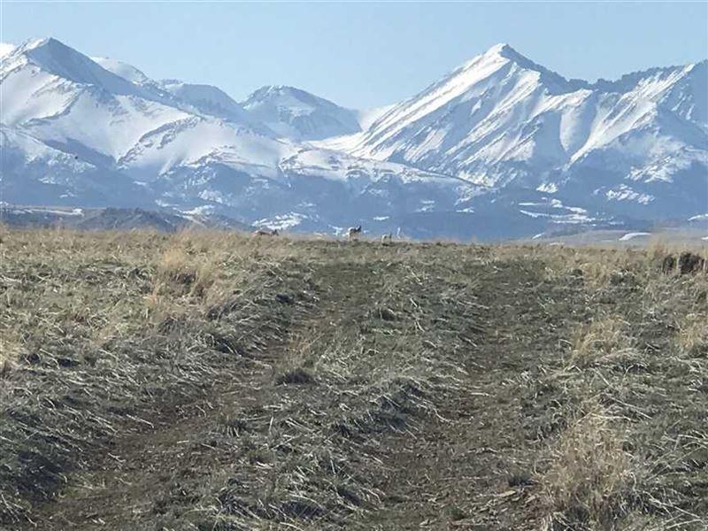 Dry Creek Land North of Big Timber : Big Timber : Sweet Grass County : Montana