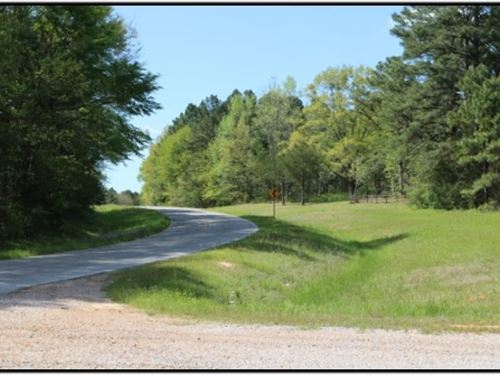 125 Acres In Attala County, Ms : Kosciusko : Attala County : Mississippi