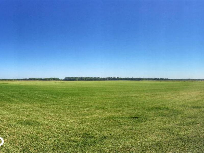 Baldwin County Sod Farm : Foley : Baldwin County : Alabama
