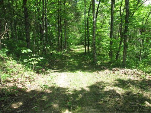 23 Acres In Hart County, Ky : Magnolia : Hart County : Kentucky