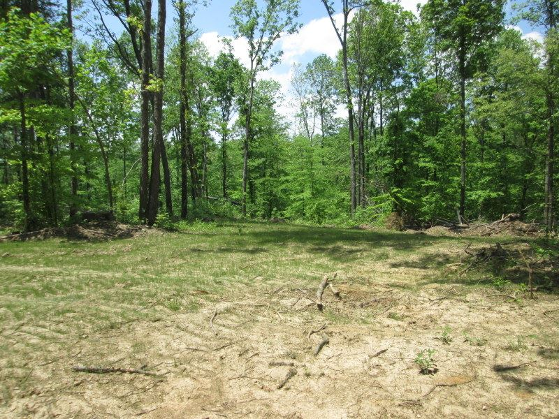 25 Acres In Hart County, Ky : Magnolia : Hart County : Kentucky
