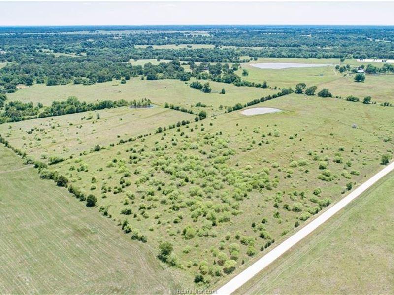 99+ Acres North Brazos County : Hearne : Brazos County : Texas