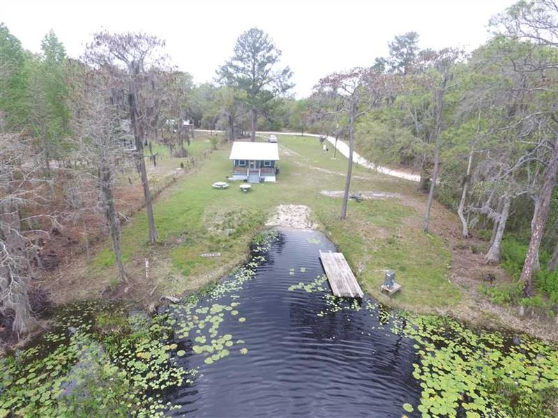 4828 Andrews Lake Road, Shady Gro : Perry : Taylor County : Florida