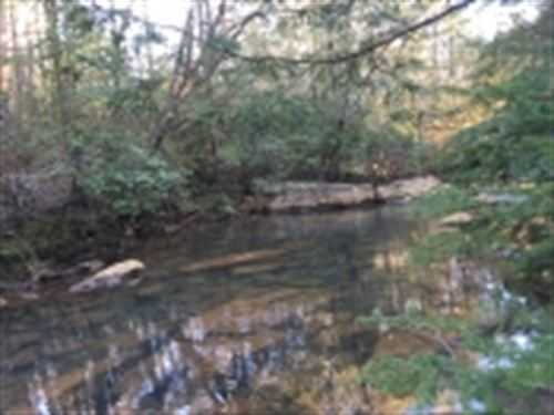 Hunting Tract On The Rocky River : Spencer : Van Buren County : Tennessee
