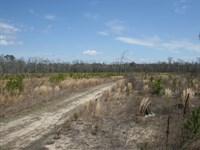A.C.L Brown : Eure : Gates County : North Carolina