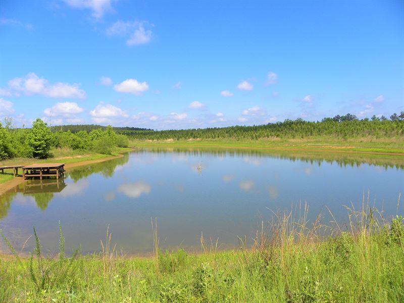 24-045 Gin Creek North : Luverne : Crenshaw County : Alabama