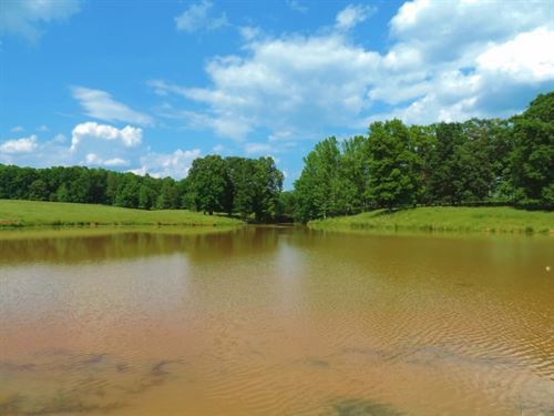 Cattle Farm With 2 Ponds : Monticello : Jasper County : Georgia