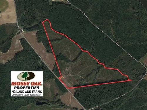 Reduced, 104.8 Acres of Hunting : Littleton : Halifax County : North Carolina