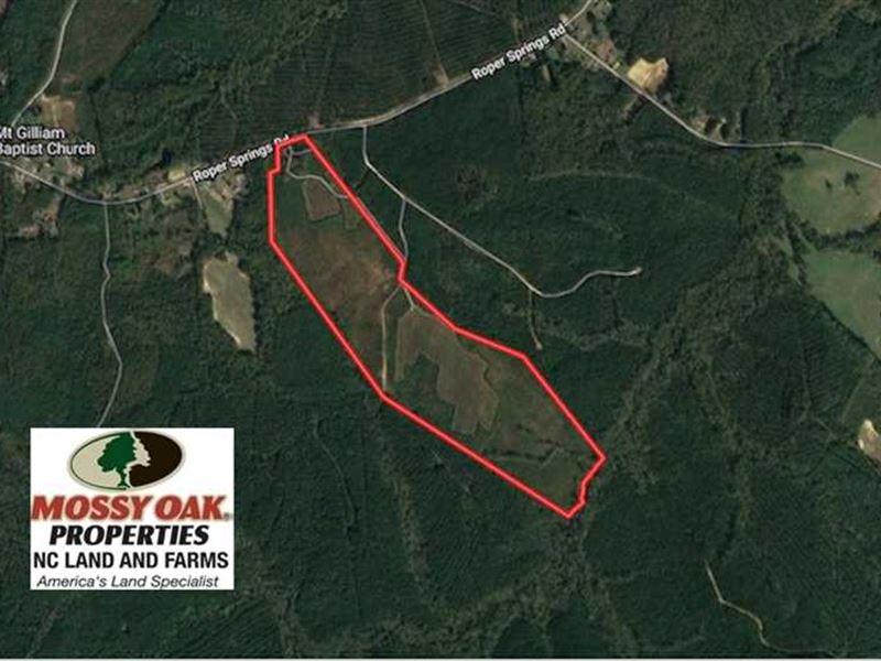 102 Acres of Hunting Land For Sale : Littleton : Halifax County : North Carolina