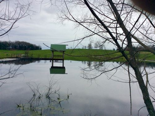 Farm With Lakes And Woods : Walling : White County : Tennessee