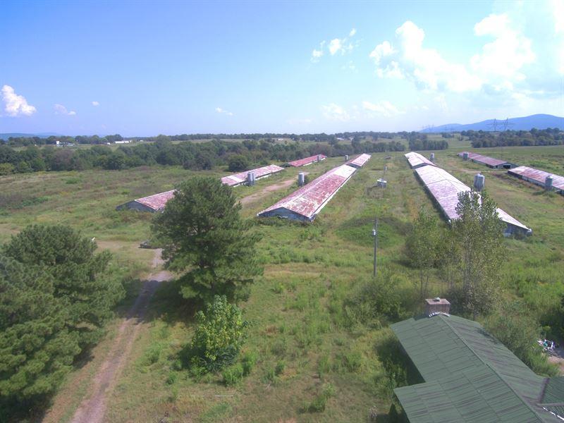 55 Acre Farm In Need A Little Tlc : Danville : Yell County : Arkansas
