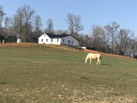 Country Home On 7.3 Acres : Glasgow : Barren County : Kentucky
