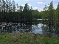 183 Acres With 9 Acre Private Stoc : Columbia : Maury County : Tennessee
