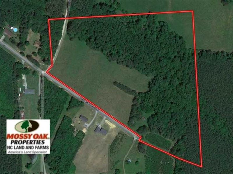 Reduced, 22 Acres of Timber And : Oxford : Granville County : North Carolina