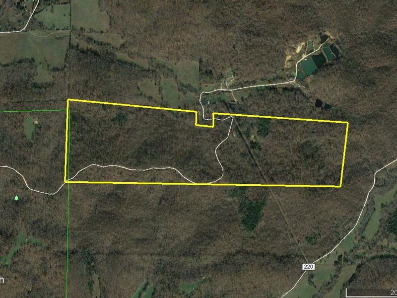 149 Acres County Rd 217 Wayne Co : Silva : Wayne County : Missouri