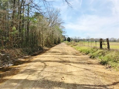 110 Arces Timber Hunting Land For : Blue Hill : Jefferson County : Mississippi