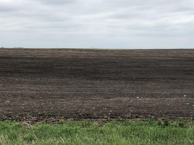320 Acres Brown County Sd Farm Land : Aberdeen : Brown County : South Dakota