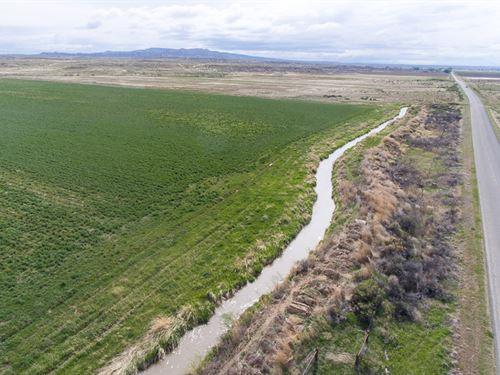Burlington Irrigated Farm : Burlington : Big Horn County : Wyoming