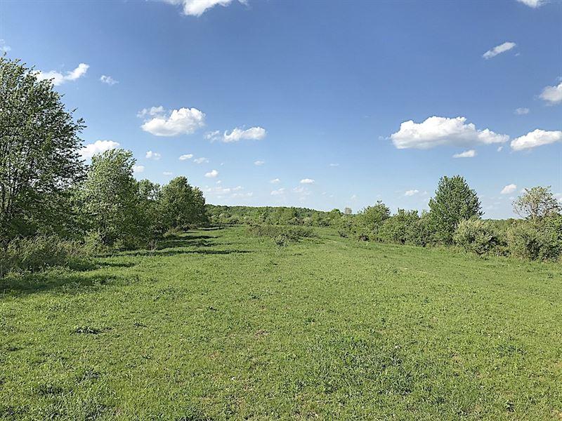 Cr 14 - 40 Acres : Waterloo : Lawrence County : Ohio