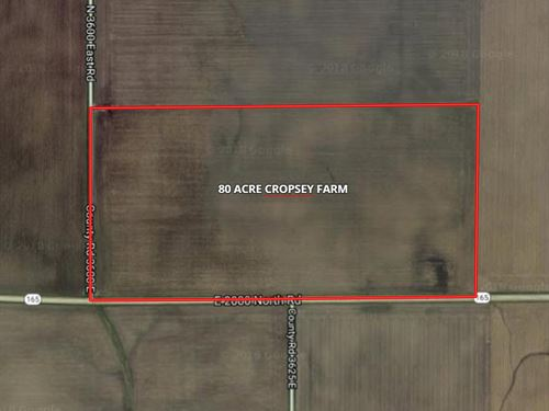 81 Acre Cropsey Farm : Cropsey : McLean County : Illinois