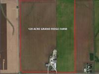 120 Acre Grand Ridge Farm : Grand Ridge : LaSalle County : Illinois