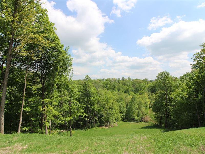 Tiber Rd - 26 Acres : Jacobsburg : Belmont County : Ohio
