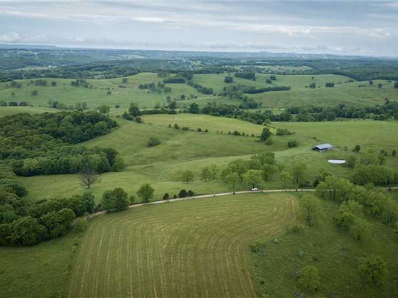 Productive Cattle Farm in Southern : Wasola : Ozark County : Missouri