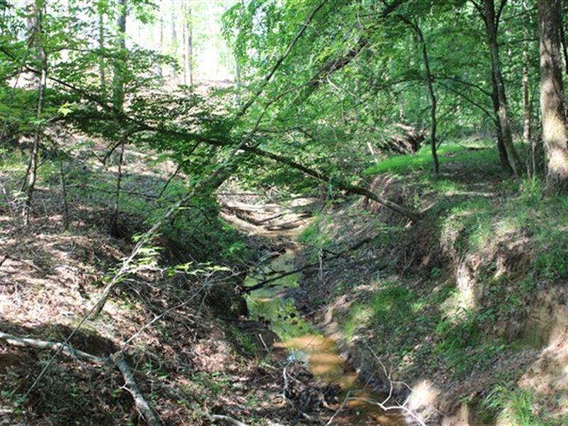 84.52 Acres - Fairfield County, Sc : Blair : Fairfield County : South Carolina